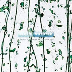 B4217-00F  CLEAR, FRIT IT,/DARK GREEN, S