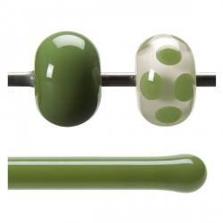 ROD B0212 OLIVE GREEN